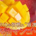 【楽天】食品売れ筋ランキングベスト10!【2018年5月13日】