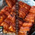 【楽天】食品売れ筋ランキングベスト10!【2018年8月5日】